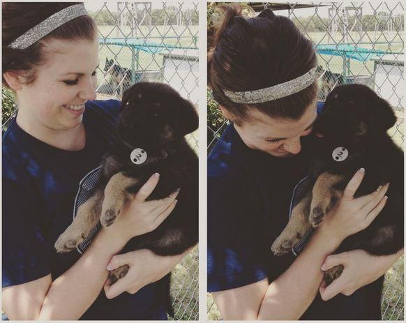 fitz puppy #2